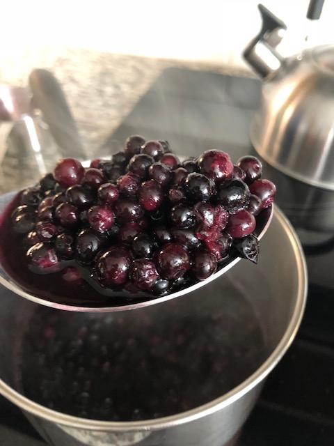 blueberrytart4